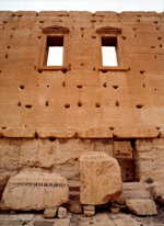 Bild från Palmyra