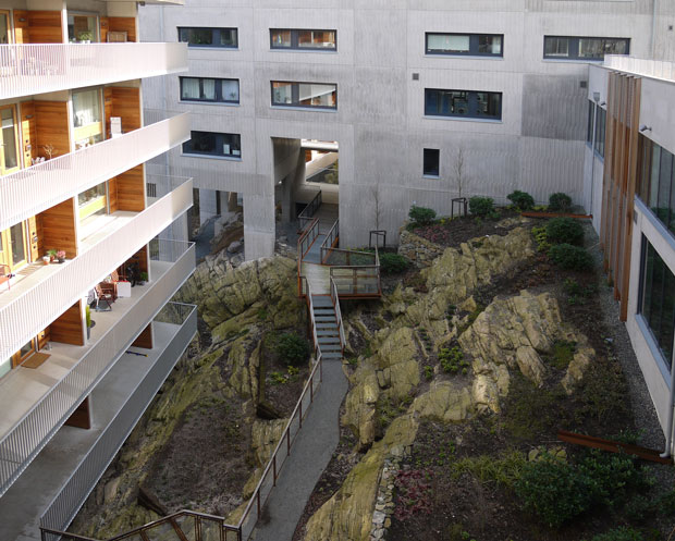 Viva, Göteborg 2020.